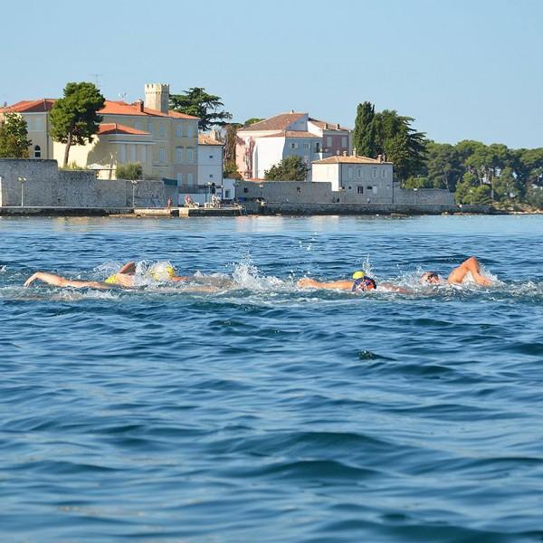 Poreč Delfin - rekreativer Schwimm- Marathon 2.9.2017.