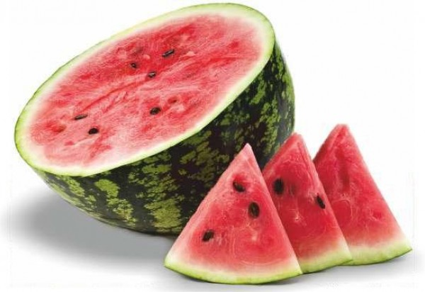 Watermelon Festival Events Porec Istra Istria Official