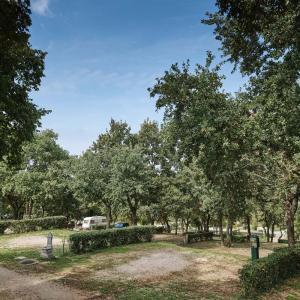 Camping Zelena Laguna-1