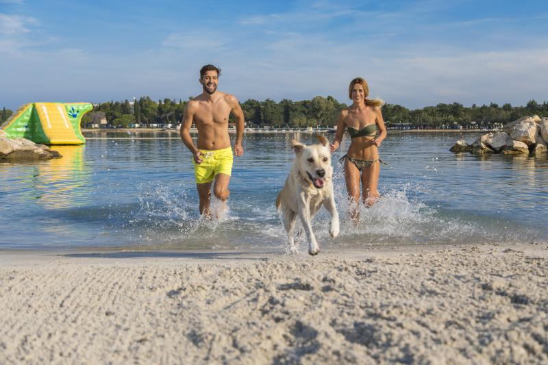 Pet-Friendly Poreč for a dog-gone great holiday