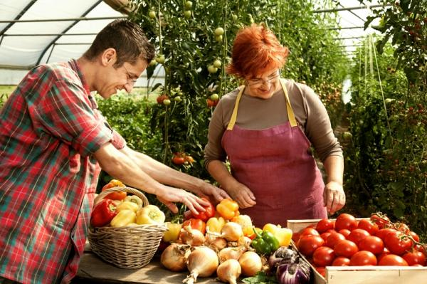 Fair of original Istrian agricultural products